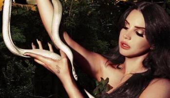 lust for like cover snake